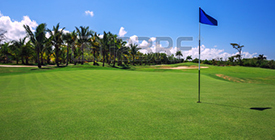 40978873-golf-course-beautiful-landscape-of-a-golf-court-with-palm-trees-in-punta-cana-dominican-republic
